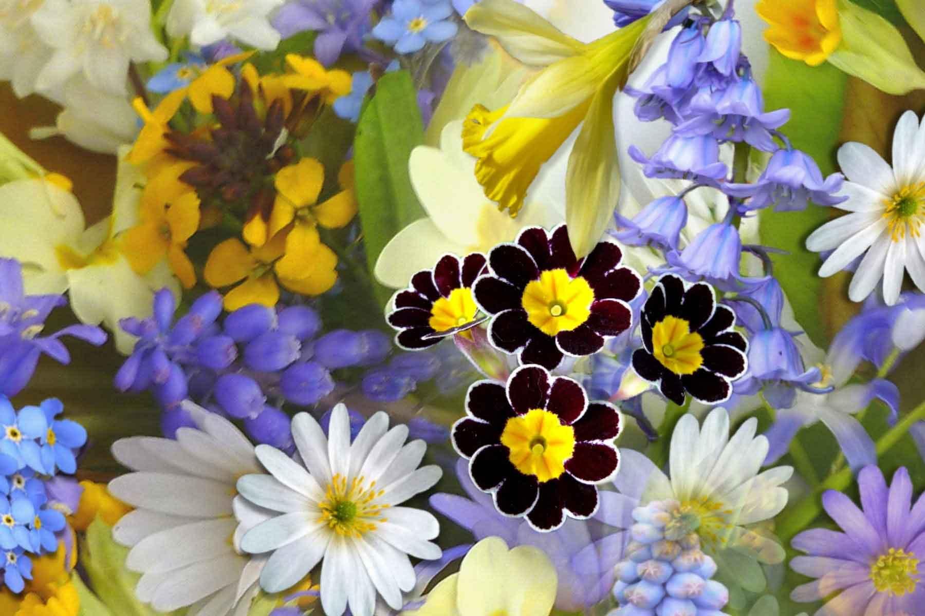 Kreisagrarmuseum Blumen